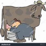 Valio.cow